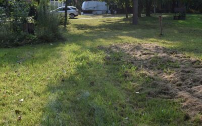 LOT 648 – PRICE REDUCED